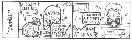 strip3